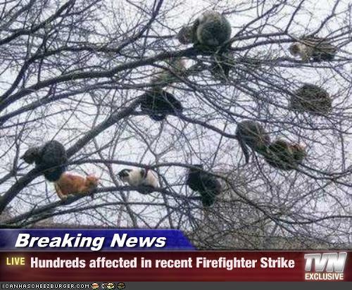 Hundreds affected in recent Firefighter Strike